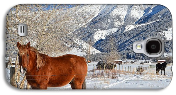 Animals Jewelry Galaxy S4 Cases - Horses in winter Galaxy S4 Case by Anne Foster