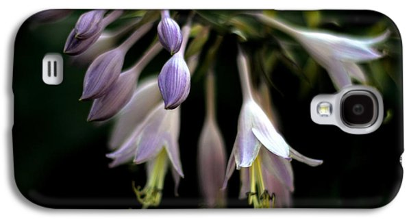 Stamen Digital Galaxy S4 Cases - Hosta Petals Galaxy S4 Case by Jessica Jenney