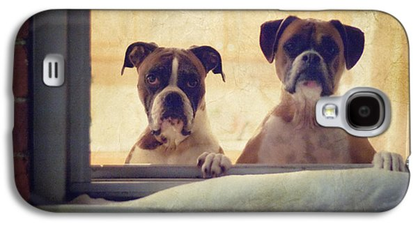Boxer Galaxy S4 Cases - How Much is that Doggie in the Window? Galaxy S4 Case by Stephanie McDowell