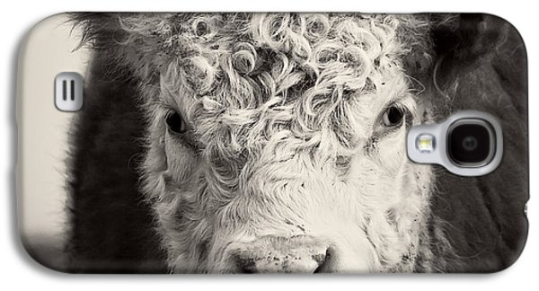 Steer Galaxy S4 Cases - How now brown cow Square Format Galaxy S4 Case by Edward Fielding