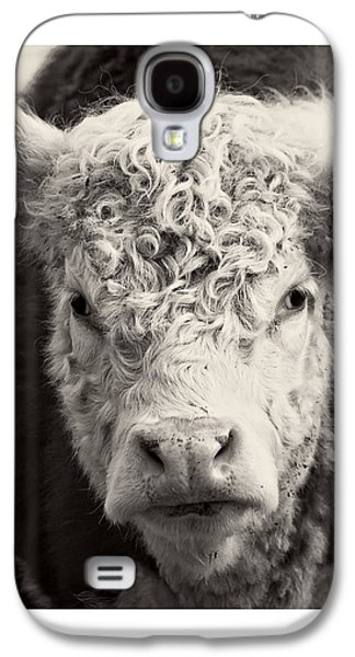 Brown Tones Galaxy S4 Cases - How now brown cow Square Format Galaxy S4 Case by Edward Fielding
