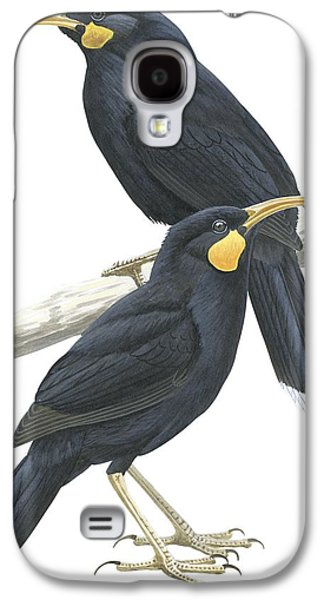 Feather Drawings Galaxy S4 Cases - Huia Galaxy S4 Case by Anonymous