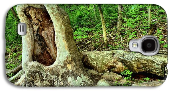 Indiana Landscapes Photographs Galaxy S4 Cases - Human Eating Tree Galaxy S4 Case by Adam Jewell