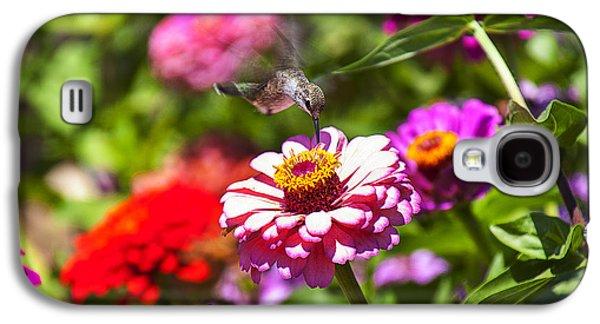 Hummingbird Flight Galaxy S4 Case by Garry Gay