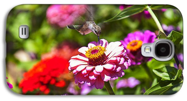 Hovering Galaxy S4 Cases - Hummingbird Flight Galaxy S4 Case by Garry Gay