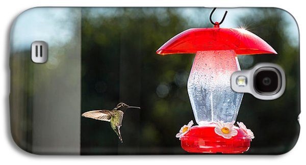 Hovering Galaxy S4 Cases - Hummingbird Hovering At Bird Feeder Galaxy S4 Case by Panoramic Images
