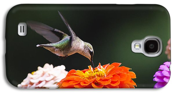 Hovering Galaxy S4 Cases - Hummingbird in Flight with Orange Zinnia Flower Galaxy S4 Case by Christina Rollo
