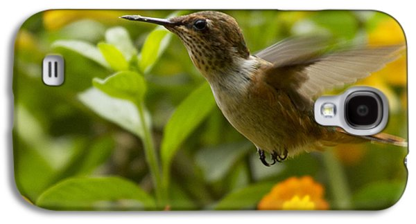 Hummingbird Looking For Food Galaxy S4 Case by Heiko Koehrer-Wagner