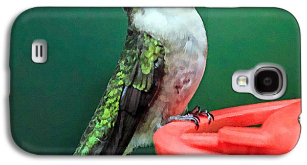 Florescent Lighting Galaxy S4 Cases - Hummingbird Perched On Feeder Galaxy S4 Case by Geraldine Scull