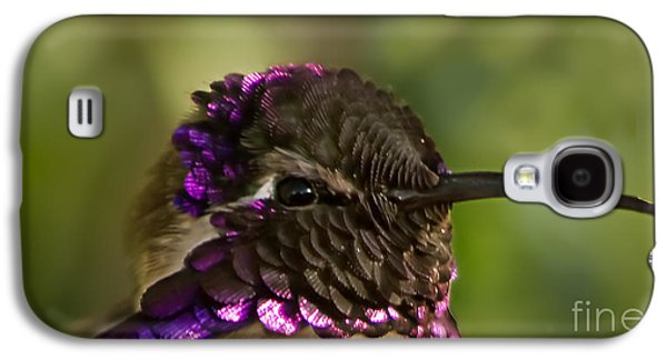 Haybale Galaxy S4 Cases - Hummingbird Portrait Galaxy S4 Case by Robert Bales
