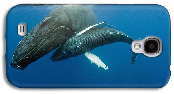 Humpback Whale And Calf Galaxy S4 Case by Andrew J. Martinez
