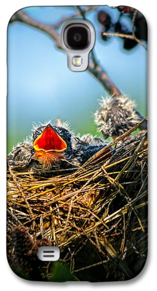 Chicks Galaxy S4 Cases - Hungry Tree Swallow Fledgling In Nest Galaxy S4 Case by Bob Orsillo