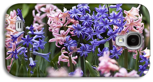 Garden Images Galaxy S4 Cases - Hyacinth Garden Galaxy S4 Case by Frank Tschakert
