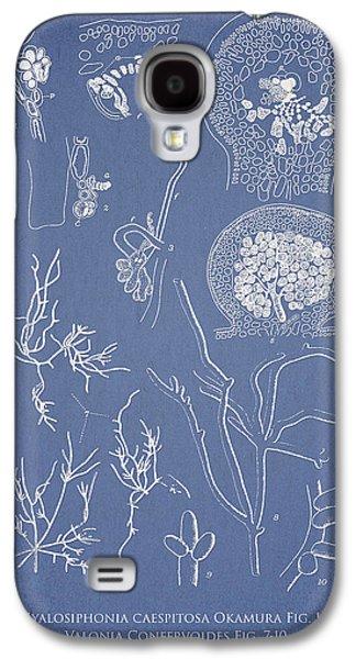 Ornamental Digital Art Galaxy S4 Cases - Hyalosiphonia caespitosa Okamura Valonia Confervoides Galaxy S4 Case by Aged Pixel