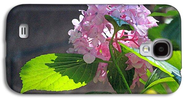 Floral Digital Digital Galaxy S4 Cases - Hydrangea Heaven Galaxy S4 Case by Suzanne Gaff