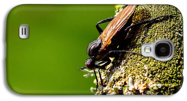 Nature Study Mixed Media Galaxy S4 Cases - Hymenoptera Galaxy S4 Case by Toppart Sweden