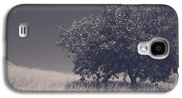 Lone Tree Galaxy S4 Cases - I Feel You Watching Over Galaxy S4 Case by Laurie Search