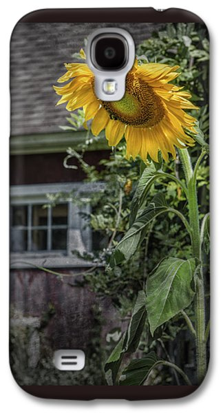 Wild Orchards Galaxy S4 Cases - Verdent Cottage Garden Galaxy S4 Case by Thomas Schoeller