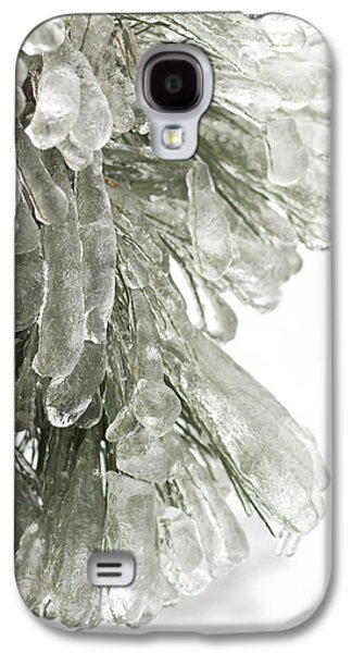 Nature Abstracts Galaxy S4 Cases - Ice on pine branches Galaxy S4 Case by Blink Images