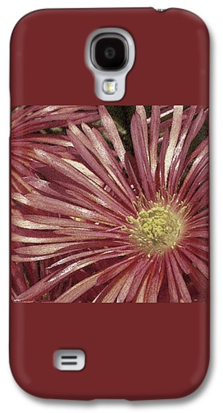 Abstracted Galaxy S4 Cases - Ice Plant Flowers No 2 Galaxy S4 Case by Ben and Raisa Gertsberg