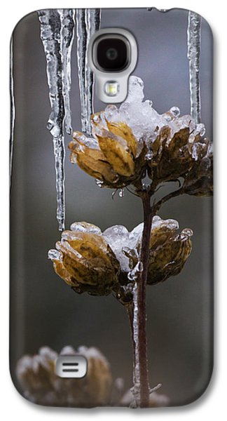 Nature Abstract Galaxy S4 Cases - Icicles and Ice Flowers Galaxy S4 Case by Angie Vogel