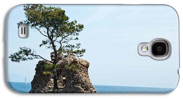 Tree Roots Photographs Galaxy S4 Cases - Impossible Nature Galaxy S4 Case by Mesha Zelkovich