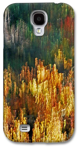 Impressionists Autumn Galaxy S4 Case by Skip Willits