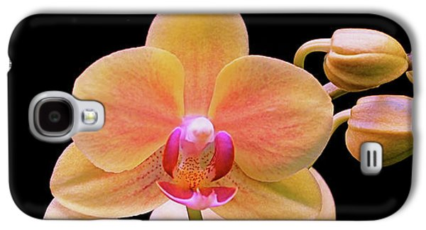 Botanical Galaxy S4 Cases - In Bloom Galaxy S4 Case by Rona Black
