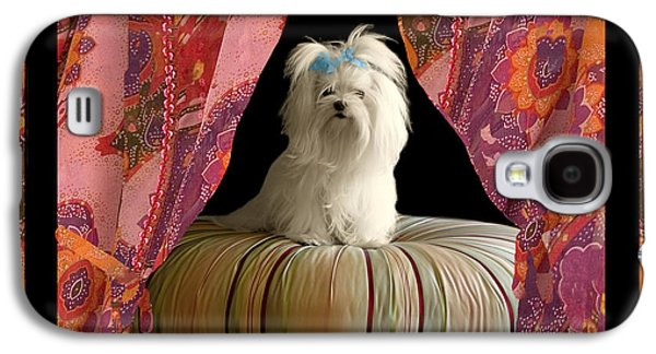 Dogs Digital Art Galaxy S4 Cases - In Memory of Ms Chloe - On Stage Galaxy S4 Case by Madeline Ellis