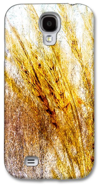Nature Abstracts Galaxy S4 Cases - In Memory Of Wheat Galaxy S4 Case by Bob Orsillo