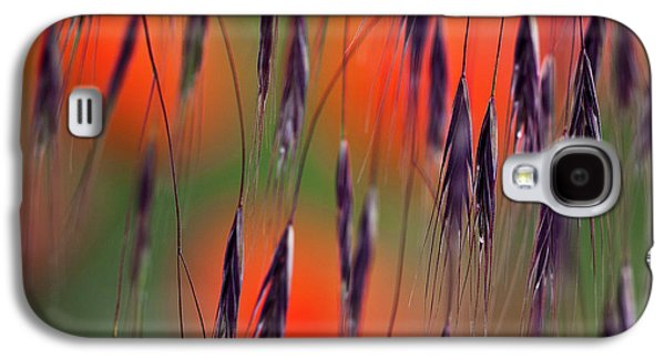 Hayfield Galaxy S4 Cases - In the Meadow Galaxy S4 Case by Heiko Koehrer-Wagner