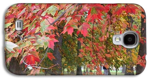 Photographs With Red. Galaxy S4 Cases - In the Park Galaxy S4 Case by Ann Willmore