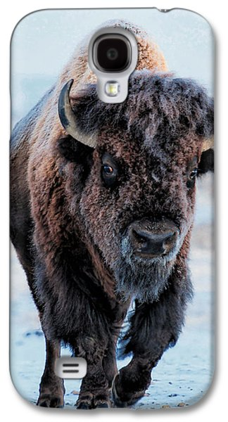 Bison Digital Galaxy S4 Cases - In the Presence of  Bison - 3 Galaxy S4 Case by OLena Art