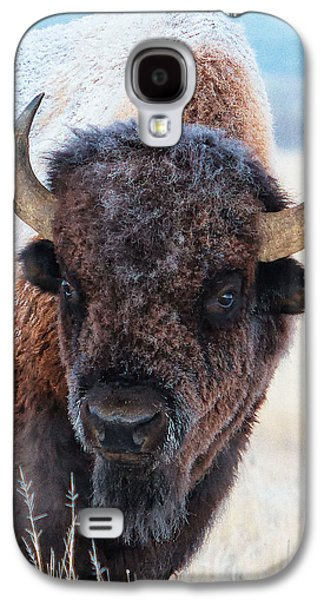 Bison Digital Galaxy S4 Cases - In the Presence of  Bison - 4 Galaxy S4 Case by OLena Art