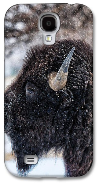 Bison Digital Galaxy S4 Cases - In the Presence of  Bison - 6 Galaxy S4 Case by OLena Art