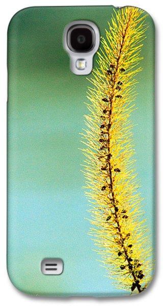 Plant Galaxy S4 Cases - In Time Galaxy S4 Case by Bob Orsillo