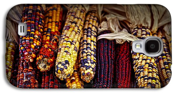 Dried Photographs Galaxy S4 Cases - Indian corn Galaxy S4 Case by Elena Elisseeva