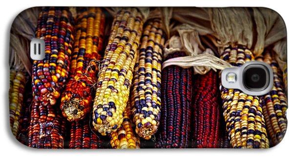 Indian Corn Galaxy S4 Case by Elena Elisseeva