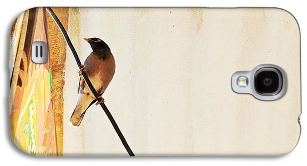 The Void Galaxy S4 Cases - Indian Myna comes to dinner Galaxy S4 Case by Kantilal Patel