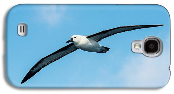 Indian Ocean Yellow-nosed Albatross Galaxy S4 Case by Peter Chadwick