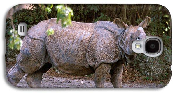 One Horned Rhino Galaxy S4 Cases - Indian Rhinoceros Galaxy S4 Case by Mark Newman
