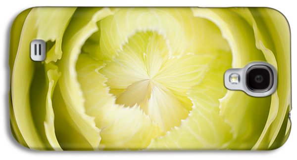 Abstract Digital Photographs Galaxy S4 Cases - Inner Cabbage Orb Galaxy S4 Case by Anne Gilbert