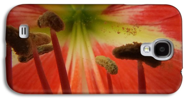 Plant Galaxy S4 Cases - Inside Amaryllis Galaxy S4 Case by Zina Stromberg