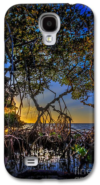 Waterscape Galaxy S4 Cases - Inside Looking Out Galaxy S4 Case by Marvin Spates