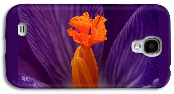 Botanical Galaxy S4 Cases - Interior Design Galaxy S4 Case by Rona Black