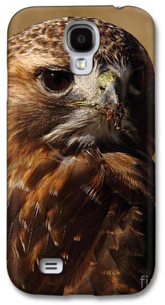 Business Decor Galaxy S4 Cases - Red Tailed Hawk Portrait Galaxy S4 Case by Robert Frederick