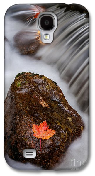 Abstract Nature Galaxy S4 Cases - Autumns Flow - A Semi Abstract Galaxy S4 Case by Thomas Schoeller