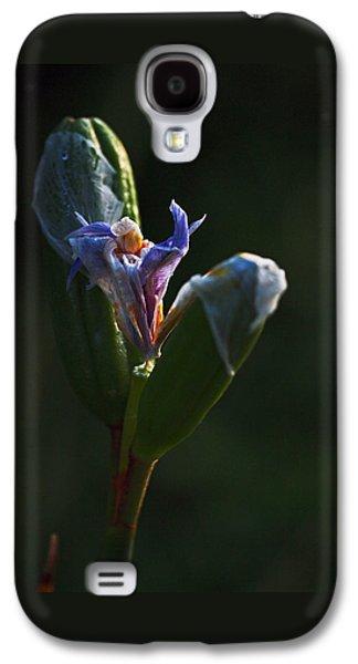 Botanical Galaxy S4 Cases - Iris Emerging  Galaxy S4 Case by Rona Black