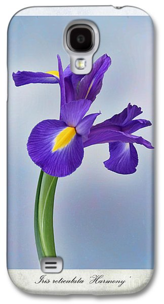 Weed Digital Galaxy S4 Cases - Iris reticulata Galaxy S4 Case by John Edwards