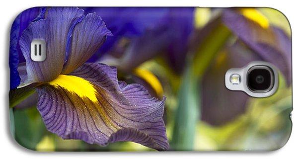 The Tiger Galaxy S4 Cases - Iris x hollandica Eye of the Tiger Galaxy S4 Case by Tim Gainey